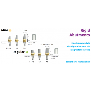 Rigid Abutments