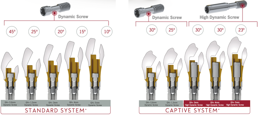 dynamic abutment captive system