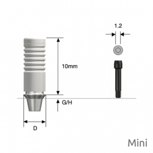 NP-CAST Abutment Mini D4.0 x G/H1.0 Non-Hex