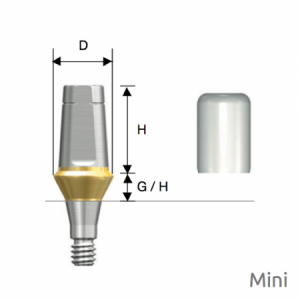 Rigid Abutment Mini D4.5 x H5.5 x G/H1.0