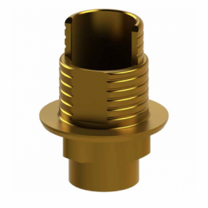 Ti-Base + Screw compatible with Nobel Replace Select® WP - Engaging